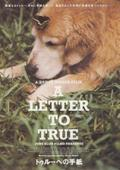 A_letter_to_true